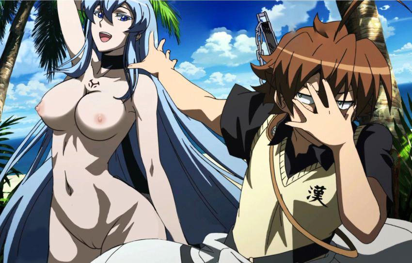 akame ga kill Erza from fairy tail naked