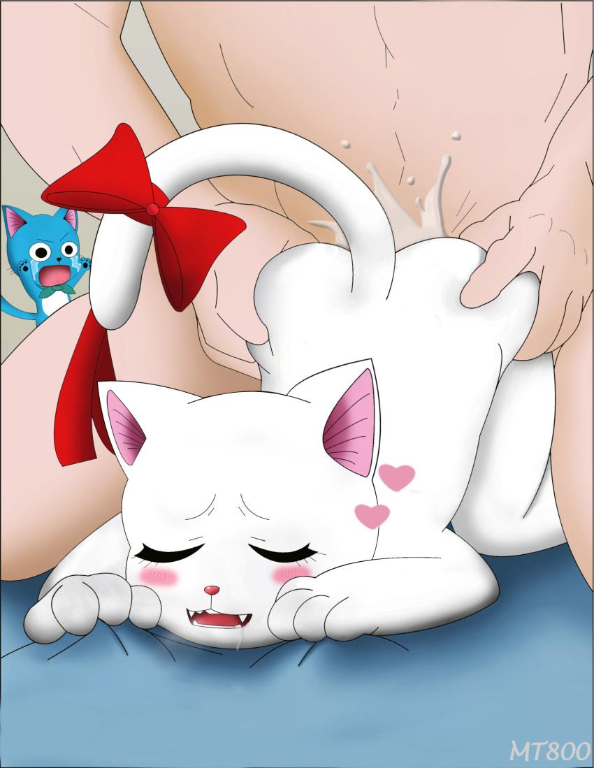 happy fairy the tail cat Shion ~zankoku na mahou no tenshi~