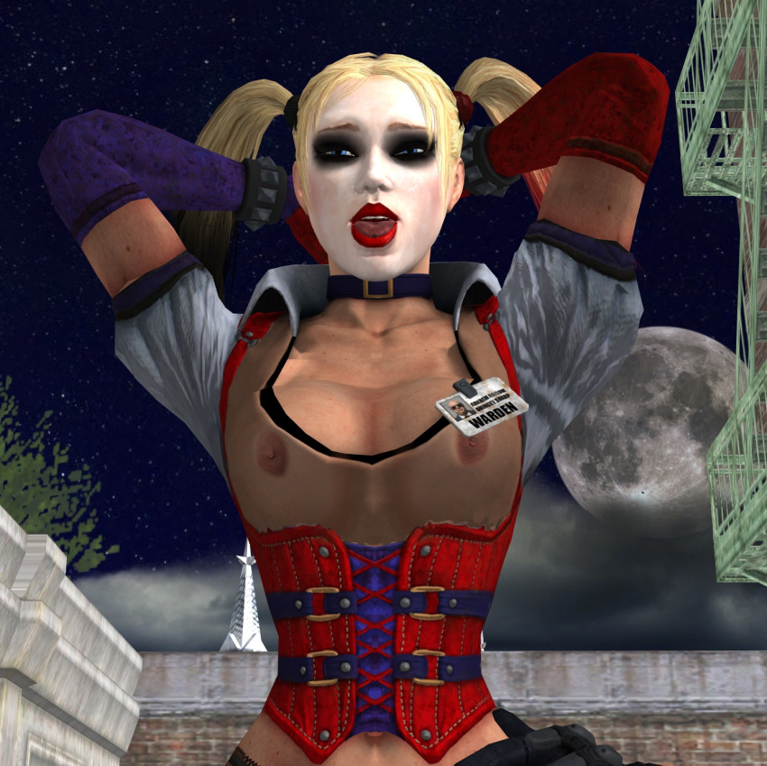 arkham city harley quinn gif Princess and the bandit 3dgspot